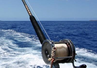 Cuba cayo largo bravoclub villa coral agenzia viaggi e turismo - Bagno coi delfini roma ...